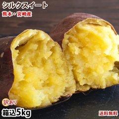 さつまいも シルクスイート 訳あり 5kg 送料無料 熊本県産 サツマイモ 春こがね 紅まさり 焼き芋 芋 いも