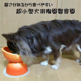 【ペット用品】陶器製 超小型犬用食器 オレンジ/CHOB1_536212