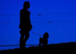 VSW情報センター 〜人の社会福祉における動物のいちづけ〜 ニュースレター Vol. 3