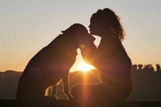 【動物虐待と対人暴力の連動性を探るオンライン講座シリーズ】「動物虐待とドメスティック・バイオレンスの関連性〜人と動物の絆を暴力から守る〜」 セミナー資料