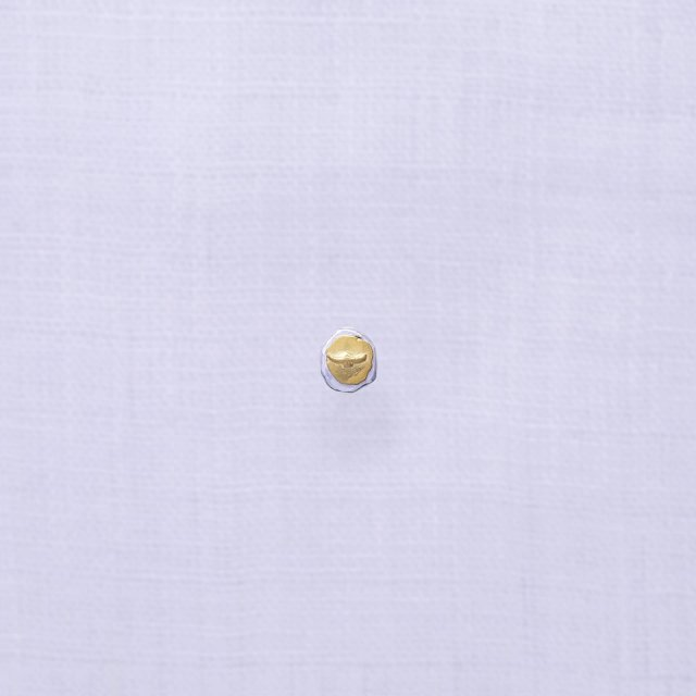 Silver & Gold Pierced Earing ( Eagle A )