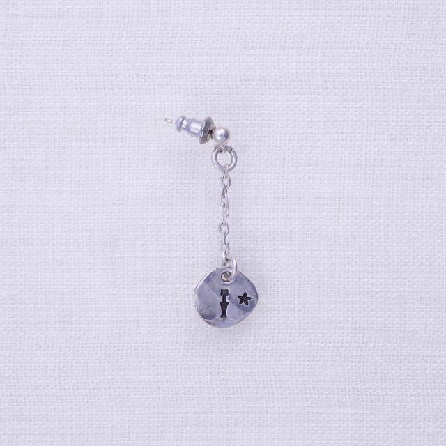 TY Pierced Earing1