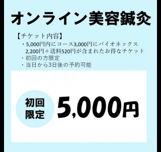 【初回限定キャンペーン】オンライン美容鍼灸