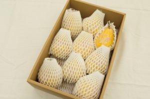 ル・レクチェ 秀品【8〜10個】3kg  芳香なかおりと濃厚な甘みの果実