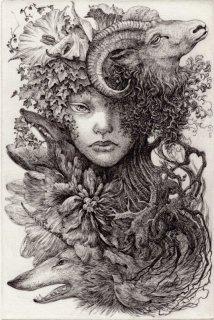 林 由紀子 銅版画(モノクロ)「未生の森の記憶」(シート)