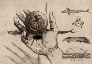 多賀 新 銅版画作品 魚シリーズ No.15「Sketch」*シート
