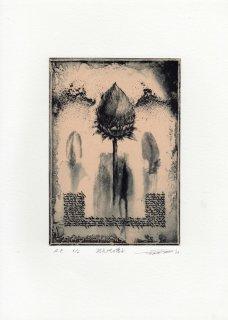 若月 公平 銅版画作品「巡礼地の種子」