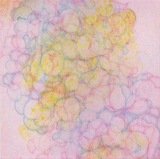 佐藤 賀奈子 銅版画「recollect -bright-」サイン入り