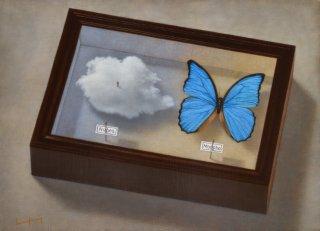小泉 孝司 作品「標本箱」*額装品