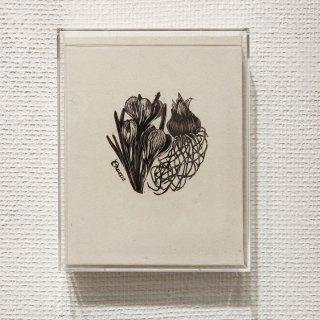 若月 陽子 木口木版画「crocus (1)」*額装品