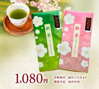 【予約商品】知覧茶 ピンク・緑