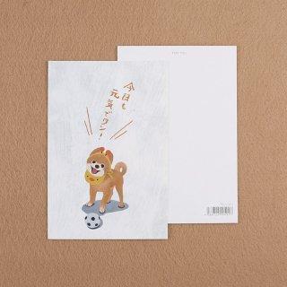 カード【ポメラニアン】100mmX148mm