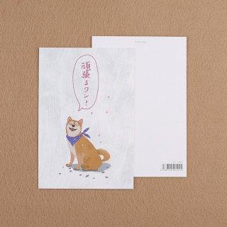カード【シバイヌ】100mmX148mm