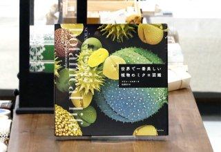 世界で一番美しい植物のミクロ図鑑