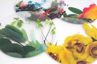 泉文 Ikebana coaster 4枚セット