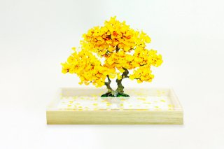 <img class='new_mark_img1' src='https://img.shop-pro.jp/img/new/icons5.gif' style='border:none;display:inline;margin:0px;padding:0px;width:auto;' />bonsai  S