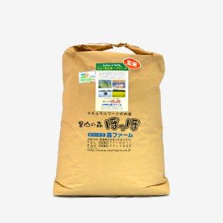 スプリングライス こしひかり・ミルキークィーン ブレンド(玄米) 30kg