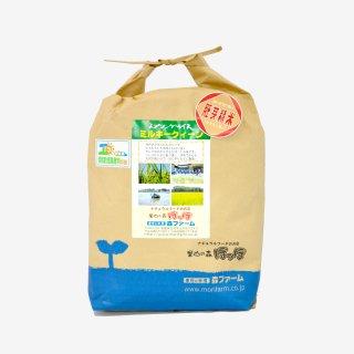 スプリングライス ミルキークィーン<br>(胚芽米) 5kg