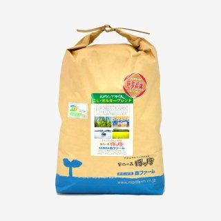 スプリングライス こしひかり・ミルキークィーン ブレンド (胚芽米) 10kg