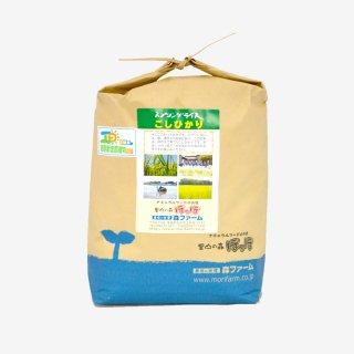 スプリングライス こしひかり<br>(無洗米) 5kg