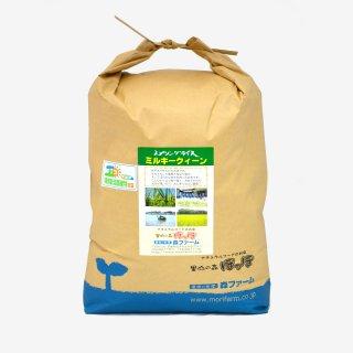 スプリングライス ミルキークィーン(無洗米) 10kg