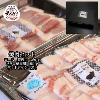 F1イノブタ肉 焼肉セット(ロース250g・バラ250g・ギフト箱)冷凍でのお届け ギフトに最適