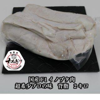 F1イノブタ肉 背脂 2Kg