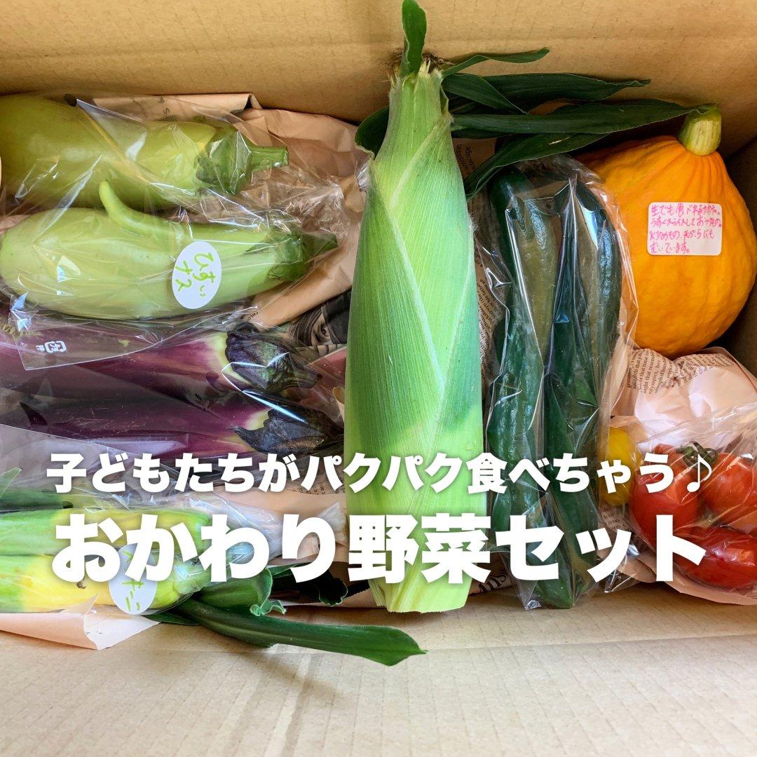 mama-yasaiセット 旬のお野菜セット【人気】【レギュラーサイズ】