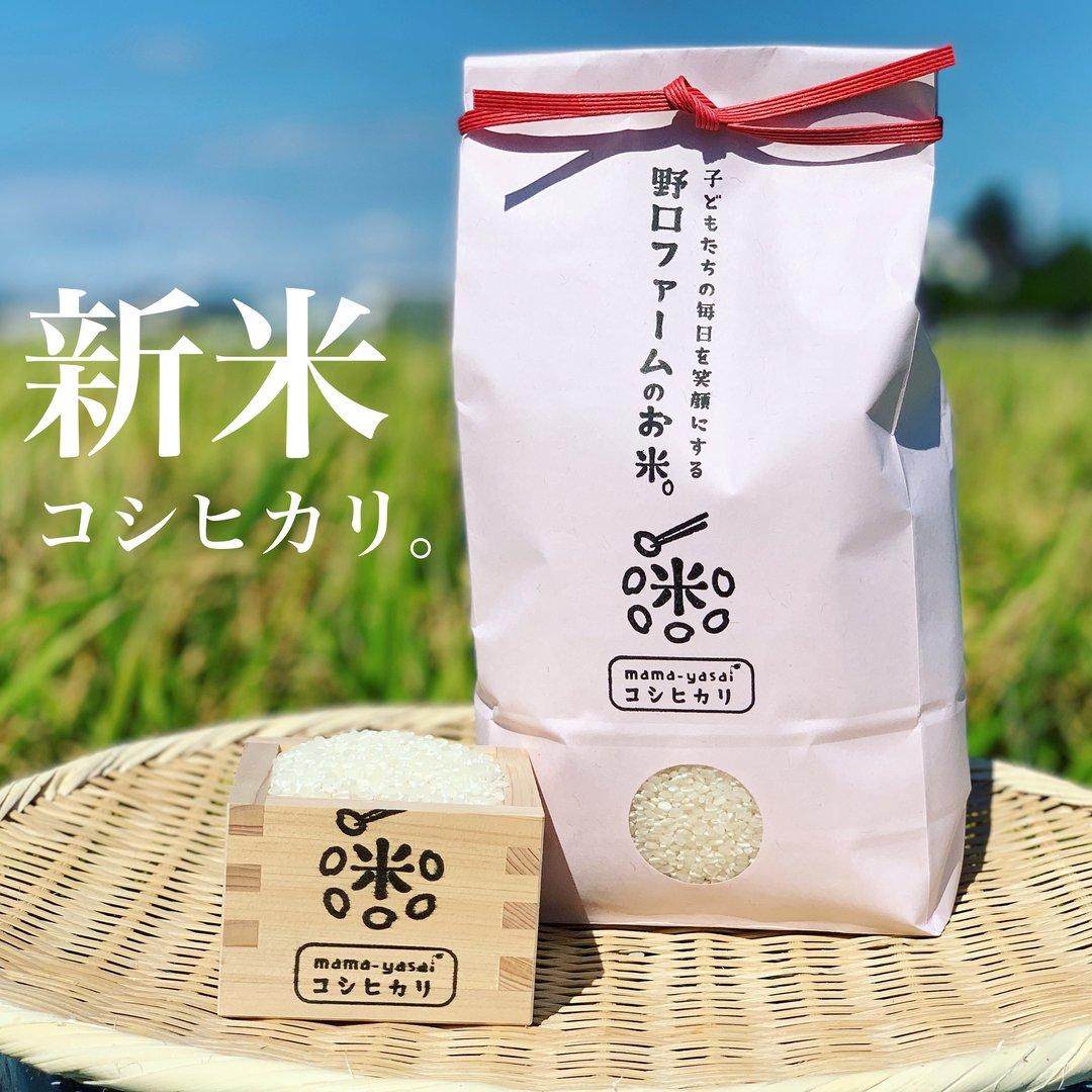 令和2年産 新米 mama-yasai コシヒカリ 10kg 【ブラザーズを魅了する味。オレ、おにぎりがあれば、それでいいわ〜!と言わせたお米】【人気】