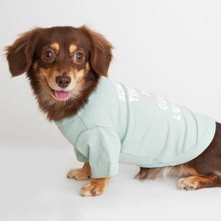 TINOTITO(ティノティート)シンプルロゴTシャツ<br><span>グリーン/パープル</span>