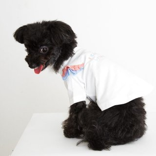 TINOTITO(ティノティート)ラッフルTシャツ<br><span>オフホワイト/ネイビー</span>
