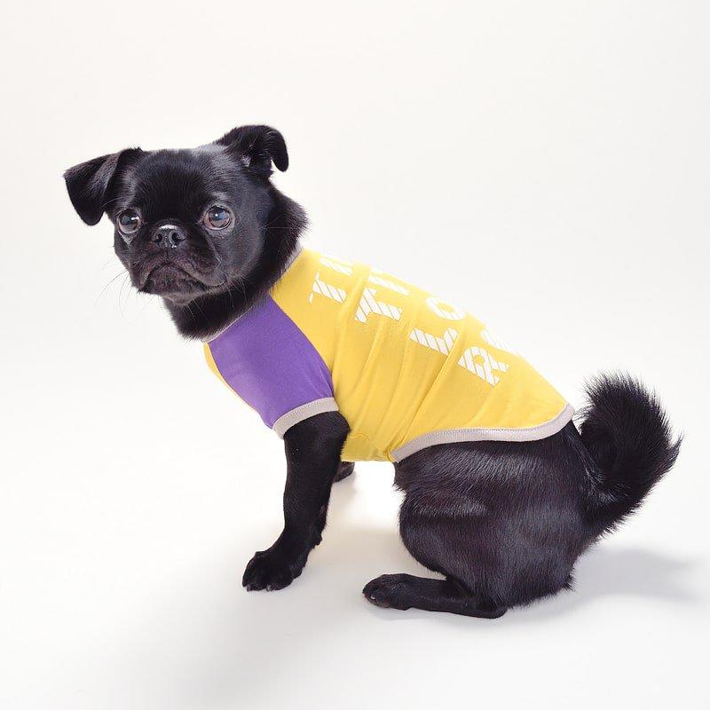 配色ラグランTシャツ(Yellow)の画像