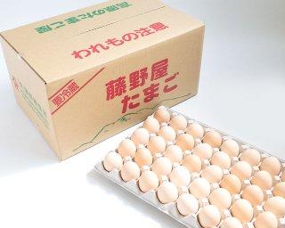 さくらたまご (10kg)【冷蔵便】