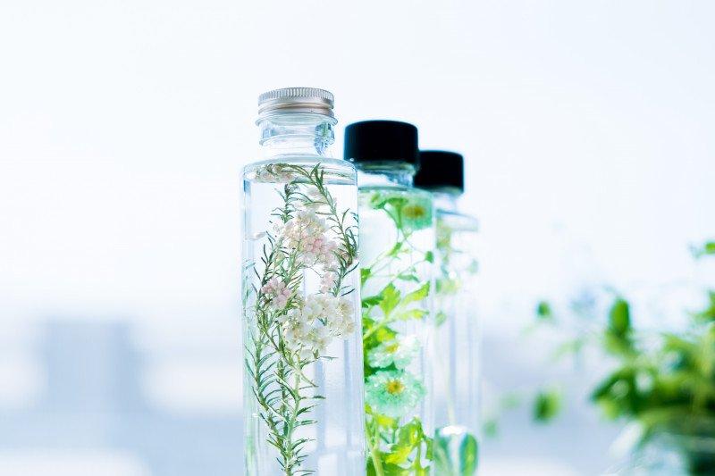 花瓶、ハーバリウム、グリーンコーディネート【画像3】