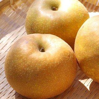 あふれる果汁!山梨県産【梨(なし)2kg】(1箱 6〜8玉)通販