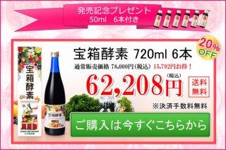 発売記念キャンペーン 720ml 6本コース  62,208円(税込)