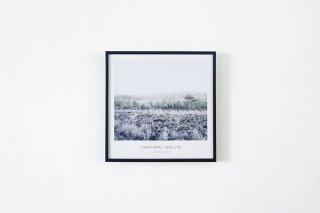 Dan Isaac Wallin / LANDVETTER