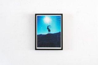 Dan Isaac Wallin / YAEL III -small-