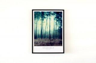 Dan Isaac Wallin / FAIRYLAND 700 × 500