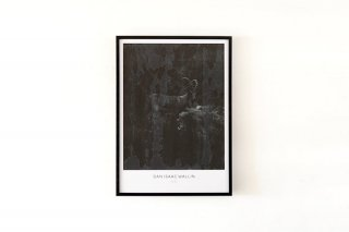 Dan Isaac Wallin / YAEL 700 × 500