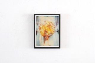 Dan Isaac Wallin / ROSES -small-
