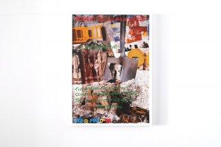 Robert Rauschenberg / Houston, Menil-Collection 1998