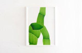 Ronan Bouroullec Drawings Poster / GREEN