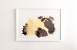 Rop van Mierlo / Panda
