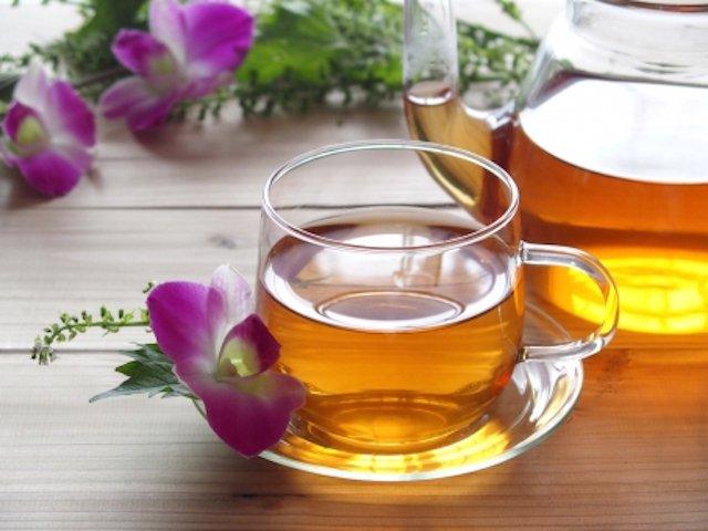 緑茶HOT300ml缶