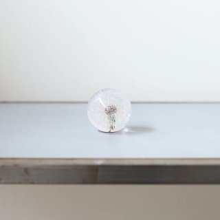 Hafod Grange - Paperweight (Dandelion)