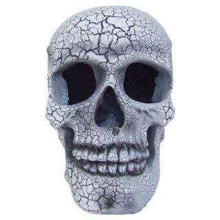 クラックスカル ストロボライト ホワイト cracked skull prop with strobe light