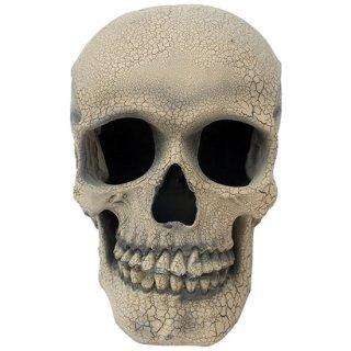 クラックスカル ストロボライト アイボリー cracked skull prop with strobe light