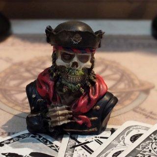 スカルバストアップミニフィギュア Pirate