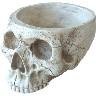 アンティークスカルヘッド スカルプランター ホワイト L Antique Skull Bone Skull Planter White L